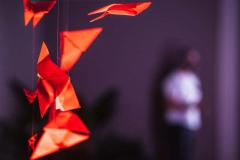 DIVULGAÇÃO-TEDXLAVRAS-4
